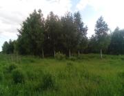 ОБМЕНЯЮ или продам земельный участок 15 сот. в 100 метрах от реки.