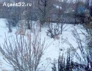 Земельный участок 11 сот.,СНТ - земли населённых пунктов, под строительство.