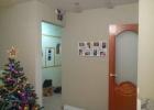 Продаём 1-к. квартиру, Бор, ул.Чайковского